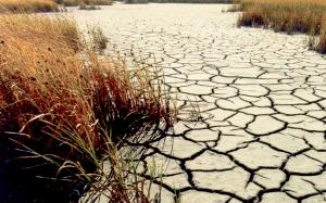 Drought_Wetlands
